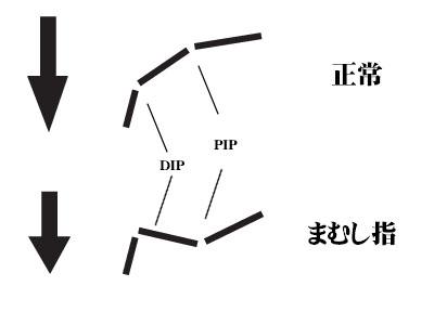 mfig2.jpg
